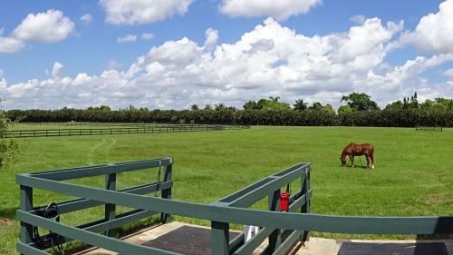Irish-Acres-Barn-21
